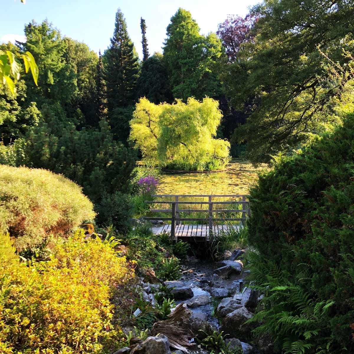 Wasser zur Gartengestaltung